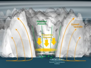 A diagram explaining the atmospherical dynamics of typhoon Haiyan when it formed.