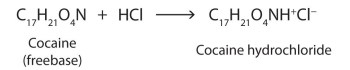 A chemical equation showing how cocaine free base can be transformed into cocaine hydrochloride.