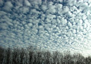 A photograph of altocumulus floccus clouds.