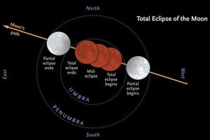 A diagram showing the different phases of the Moon's total eclipse.