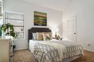 Walden Rd - Vacant Home Staging