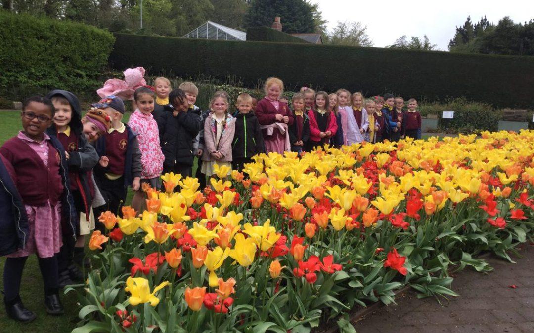 Year 1 Explore Durham Botanical Gardens