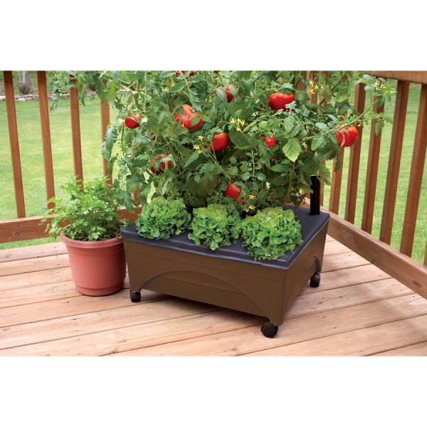 EMSCO_raised_garden_bed