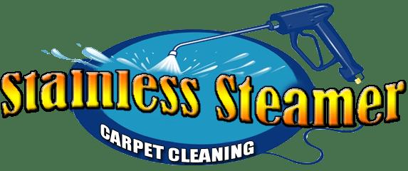 Stainless Steamer Carpet Cleaner Wwwallaboutyouthnet