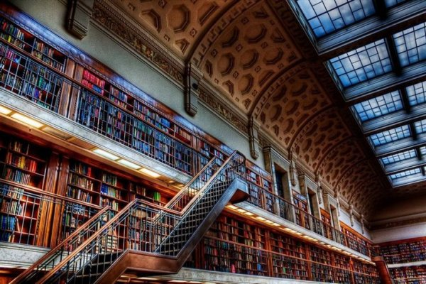 Beautiful library staircase