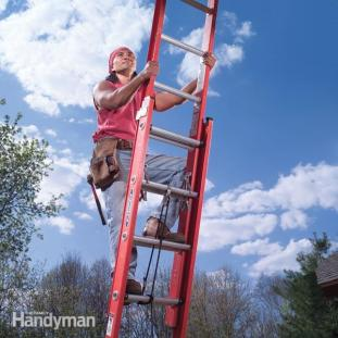 best extension ladders for home use