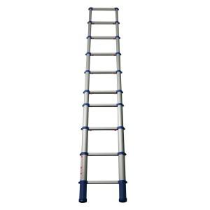 telescopic ladders telesteps