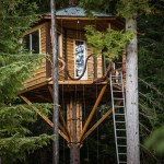 Bicycle Powered Tree Home Elevator