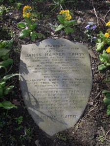 James-Napper-Tandy-768x1024