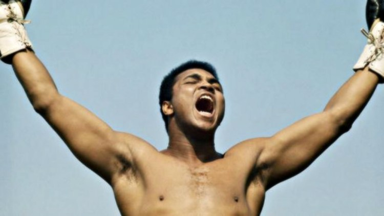 _85206230_ali_training_in_ireland_624x351
