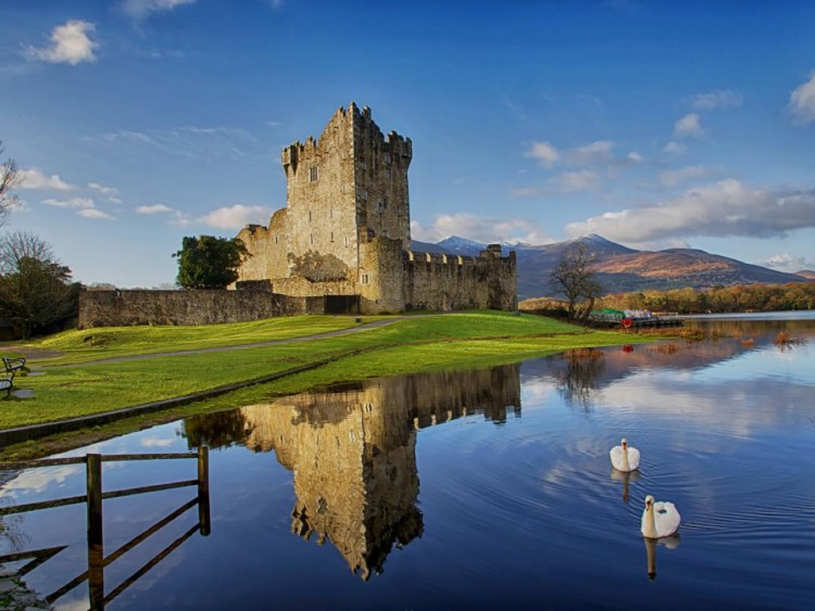 ross-castle-with-swans-january-2014