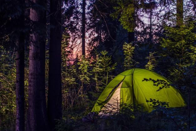 Rozbity namiot w lesie
