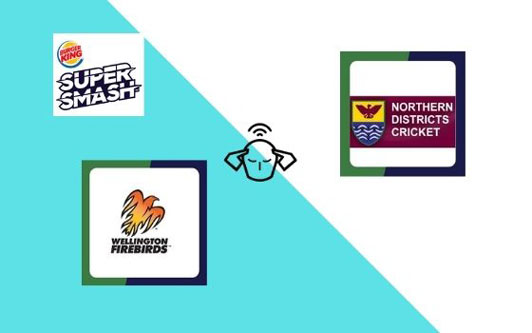 Wellington vs Northern Knights, Super Smash 2020-21, 12th T20 Match Prediction