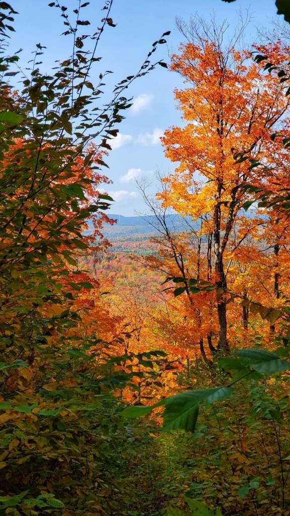 randonnee-automne