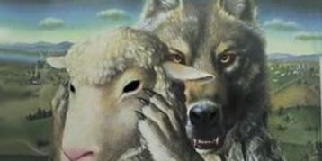 lupo agnello