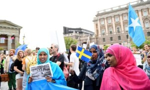 varie_swedishmigrants