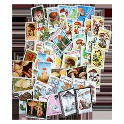Mushroom Topical Stamp Collection 50 pc