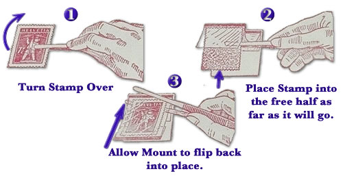 Showgard Stamp mounting instructions