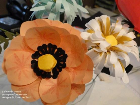wild rose & daisy