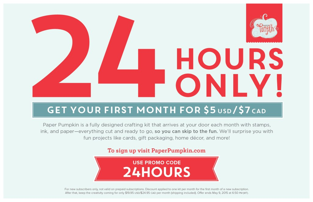 SU paper pumpkin 24hr deal