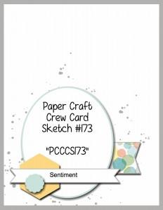 PCCCS173