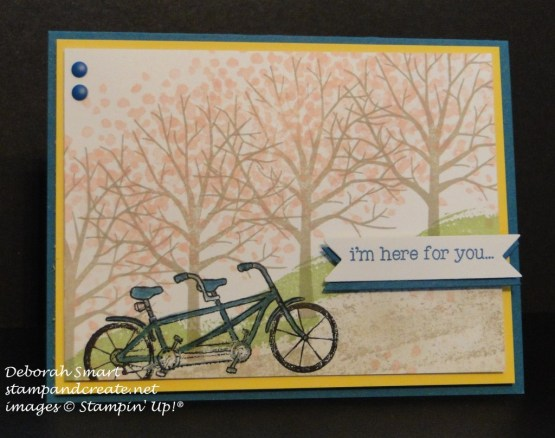 sheltering tree & pedal pushers