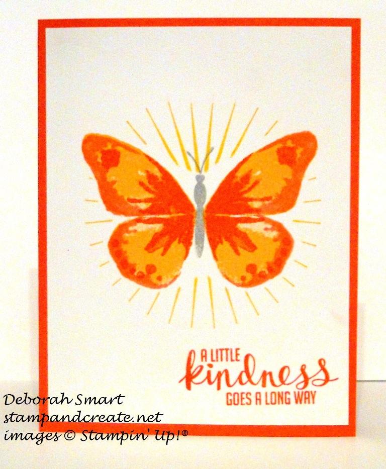 WWC CAS butterflies