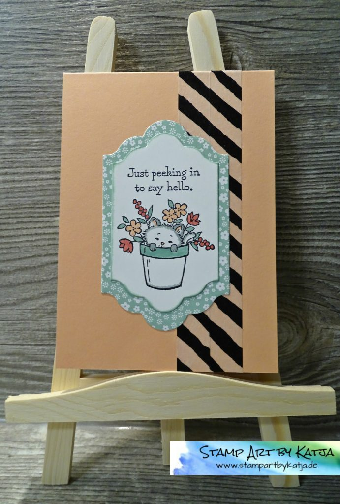 stampin-up-pretty-kitty