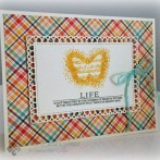 BEST OF BUTTERFLIES CARD