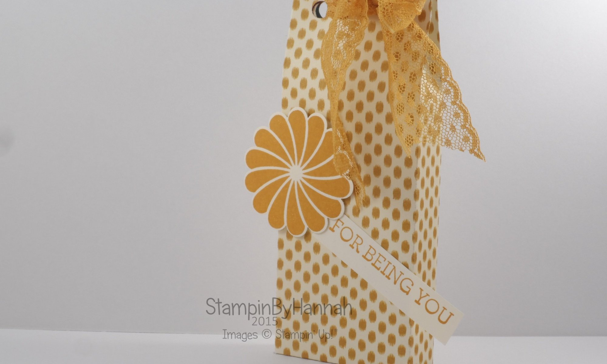 Stampin' Up! UK chocolate gift bag