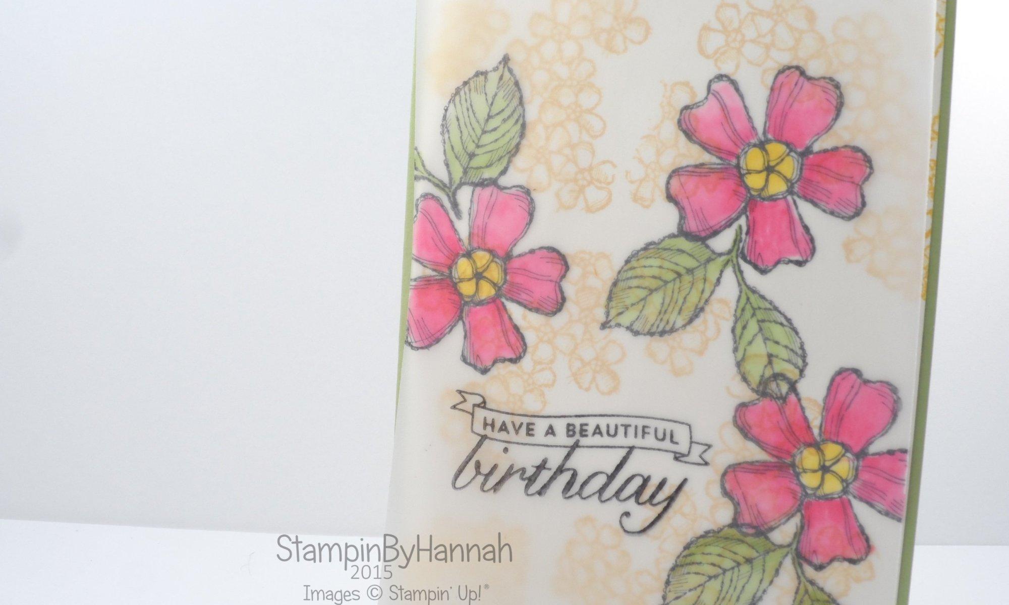 Stampin' Up! UK Blender Pens on vellum