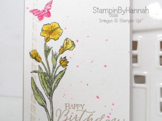 Stampin' Up! UK Butterfly Basics Week Birthday card