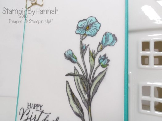 Stampin' Up! UK Butterfly Basics Birthday Card