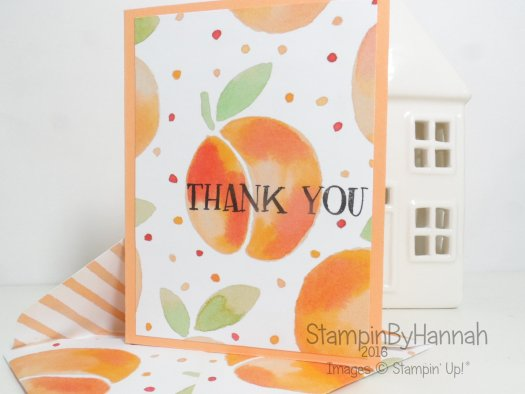 Fresh Fruit Note Card Set using Fruit Stand Designer Series Paper from Stampin' Up! UK