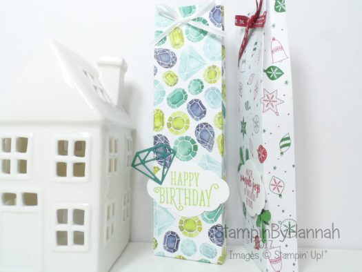 Make It Monday Video Tutorial Tall and Skinny Gift Bag using Naturally Eclectic from Stampin' Up!