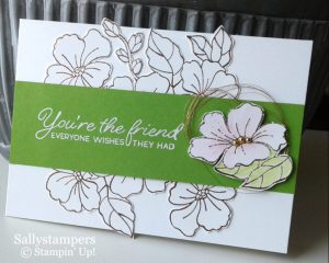 Copper Embossing with Blended Seasons from Stampin' Up! with Sally Shaw