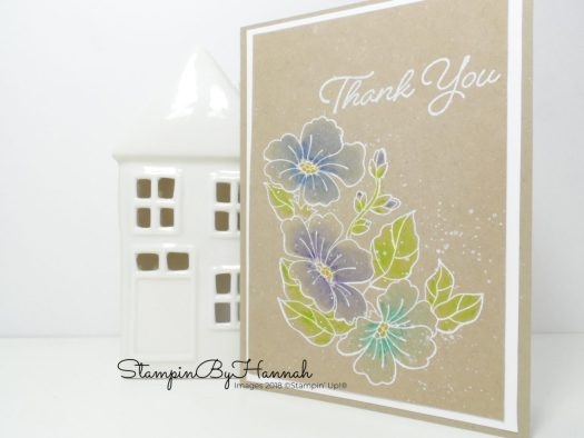 How to use watercolour Pencils and Blended Seasons from Stampin' Up!
