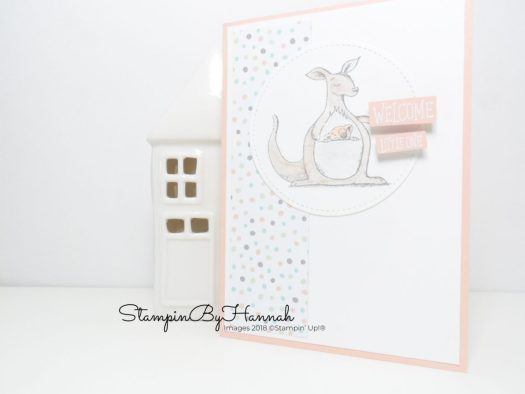Baby girl card using Animal Outings from Stampin' Up!