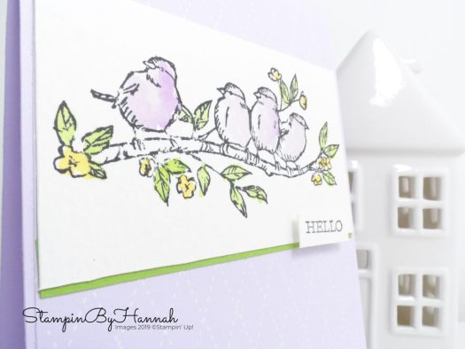 Hello card using Free as a Bird and watercolour with Stampin' Up! and StampinByHannah