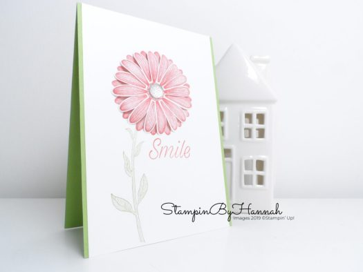 Stampin' Up! 2019-2020 In Colours Terracotta Tile and Daisy lane Smile card with StampinByHannah