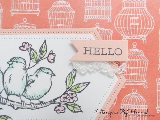Cute Hello Card using Free as a Bird from Stampin' Up! with StampinByHannah