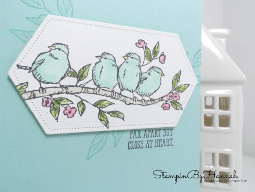 Cute bird Just Because card using Free as a Bird from Stampin' Up! with StampinByHannah