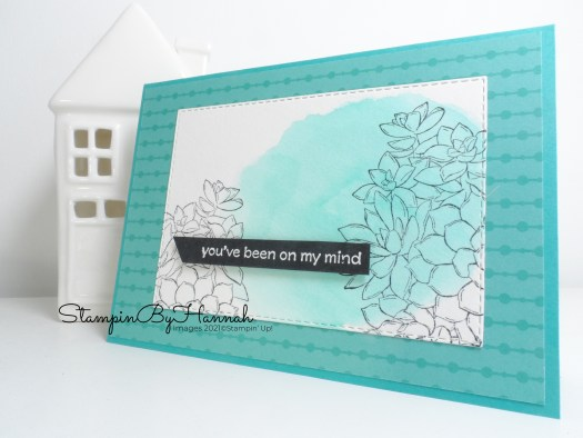 Thinking of you using Simply Succulents from Stampin' Up! with StampinByHannah