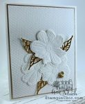 elegant card for any occasion