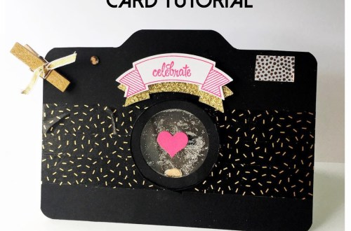 DIY Camera Shaker Card Tutorial from StampinFool.com