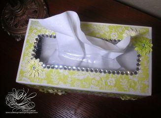 tissueboxtop-cassielarson