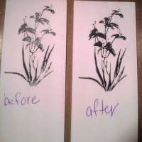 Tip: Getting Better Images from Clear Stamps