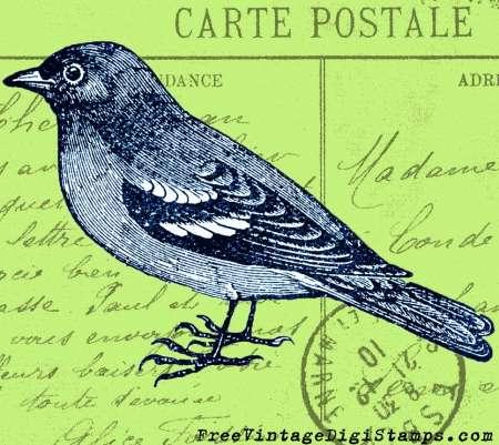 Freebie: Sparrow Bird Digital Stamps
