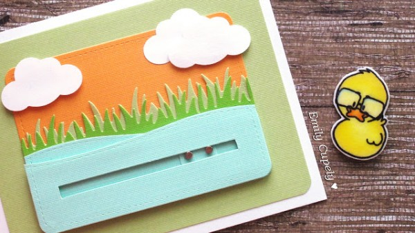Project: Duck Slider Card