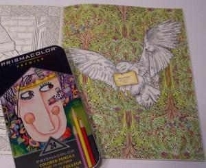 Review: Prismacolor Premier Colored Pencils and Fine Line Makers